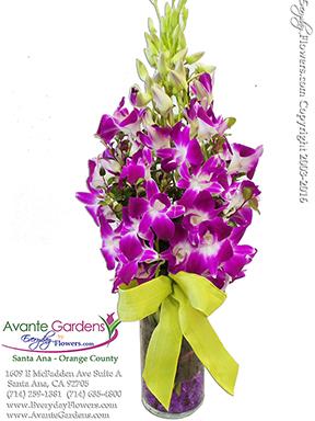 Monetu0027s Orchids   By Avante Gardens Florals Unique