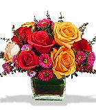 Contempo Rose Cube - by Avante Gardens Florals Unique