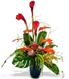 Cool Tropics Vase - by Avante Gardens Florals Unique