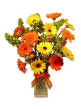 Gerbera Festival Vase Avante Gardens by Everyday Flowers
