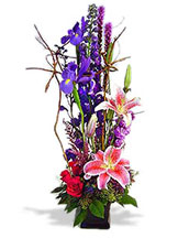 Love's Garden Avante Gardens by Everyday Flowers