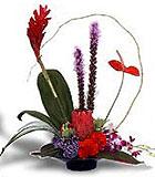 Tropical Essence - by Avante Gardens Florals Unique