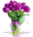 Passionate Purple Tulips - Deluxe