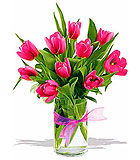 Precious Hot Pink Tulips