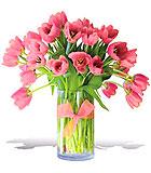 Precious Pink Tulips - Premium