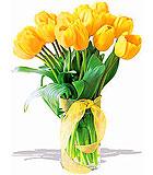 Sunny Yellow Tulips - Deluxe
