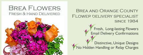 Brea Flower Delivery Service by Avante Gardens