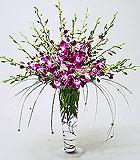 Orchid Extravaganza - by Avante Gardens Florals Unique