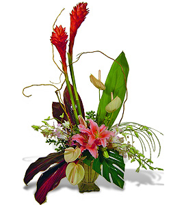 Design your own tropical contemporary arrangement avante for Design your own flower arrangement
