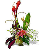 Design Your Own Tropical Contemporary Arrangement