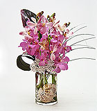 Orchids and Seashells Vase