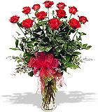 One Dozen Wow! Roses