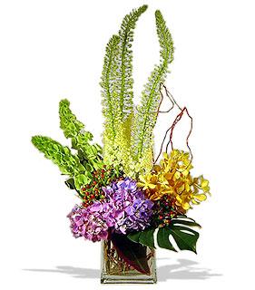 Design your own contemporary vase arrangement avante for Design your own flower arrangement