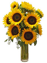 Shining Sunflowers Vase Avante Gardens by Everyday Flowers