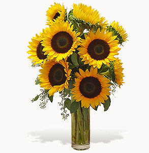 Shining Sunflowers Vase