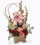 Cherub Bear Basket Arrangement