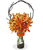 Mokara Orchids Vase