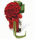 Roses Mi Amor