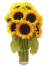 Sunflower Smiles Avante Gardens by Everyday Flowers