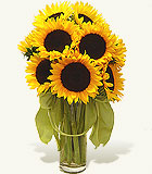 Sunflower Smiles Fountain Valley CA Delivery