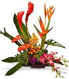 Orange County Florist - Avante Gardens by Everyday Flowers