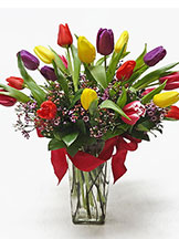 Vibrant Tulip Vase Arrangement Avante Gardens by Everyday Flowers