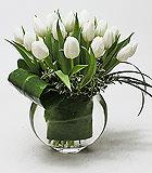 20 Elegant Tulips ny Anaheim Florist: Avante Gardens