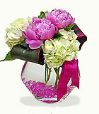 Peonies and Hydrangeas by your Anaheim Florist: Avante Gardens
