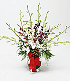 Christmas Orchids by Anaheim Florist: Avante Gardens