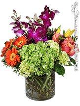 Bright Garden Pave' by Avante Gardens Florist