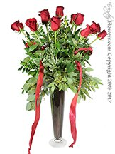 Dozen Premium Roses