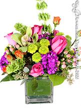 Sherbet Blossoms by Avante Gardens