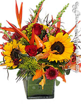 Hot Autumn Flower Delivery Avante Gardens by Everyday Flowers