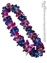 Purple And Blue Orchid Lei For Graduation