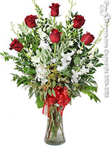 Half Dozen Long Stem Red Roses And White Orchids Valentines Day Delivery