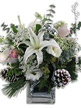 White Winter Flowers Avante Gardens by Everyday Flowers