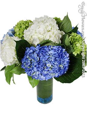 Hydrangea Garden Flower Delivery by Avante Gardens