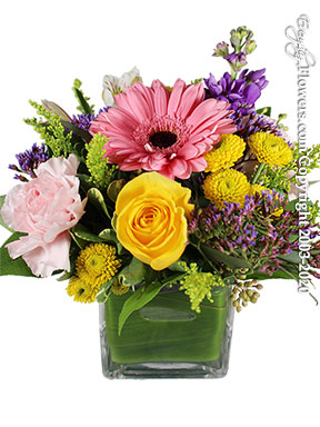 Thinking of you Spring Flowers delivery by Avante Gardens