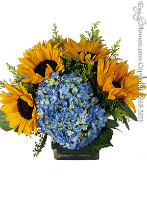 Yellow Sunflowers And Blue Hydrangea Delivery by Avante Gardens Florist