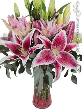 Garden Of Lilies Delivery by Avante Gardens