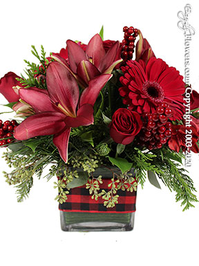 The Perfect Christmas Centerpiece by Avante Gardens