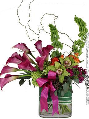 Elegant Callas by Avante Gardens Florist
