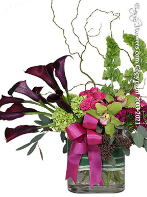 Stunning Callas - Flower Delivery by Avante Gardens Florist