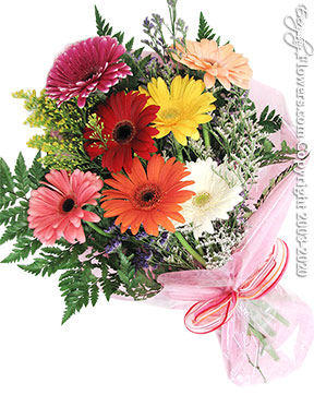 Gerbera Daisies Delivery by Avante Gardens Anaheim Florist