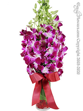 Monet Orchids For Valentines Day