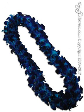 OL9 Blue Orchid Lei Double