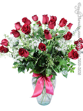 Two Dozen Roses - Long Stem Red Roses