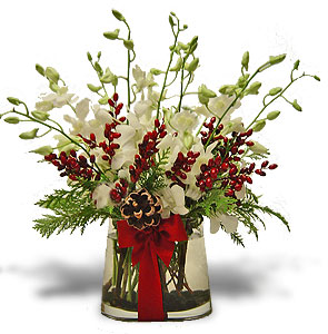 Christmas orchids arrangement by anaheim florist avante Christmas orchid arrangements