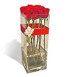 One Dozen Rose Column Vase