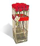 One Dozen Rose Column Vase